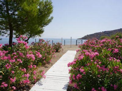 Mari-Rena Plaz - Paralio Astros - garden - beach